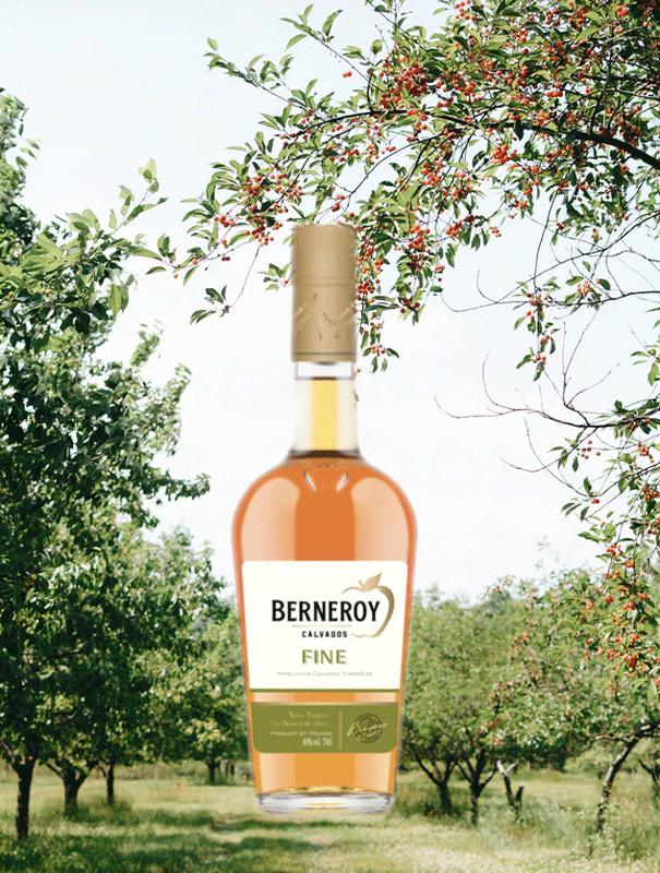 Berneroy